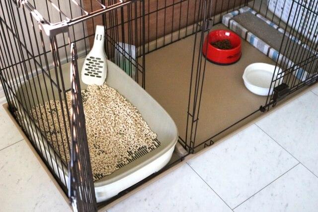 猫のトイレ食事場所